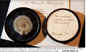 Penicillium and Penicillin